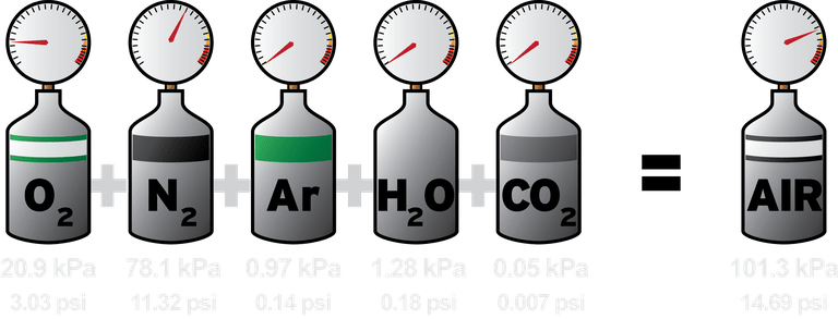 Dalton's Law of Partial Pressures: Air at sea level.