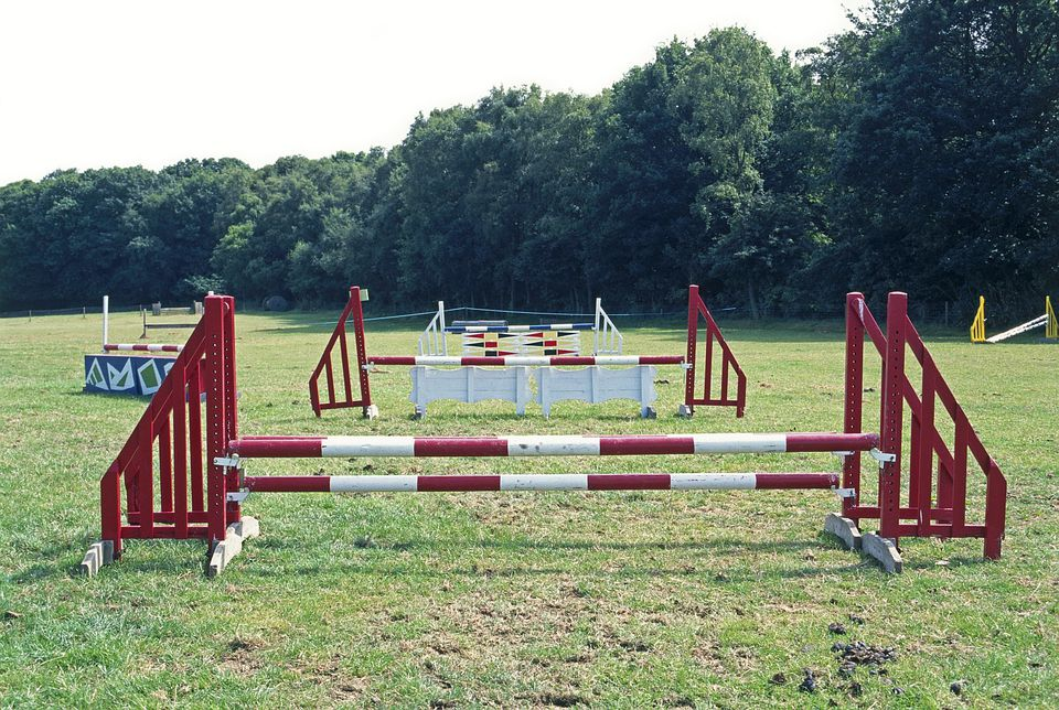 Common Types Of Equestrian Show Jumps