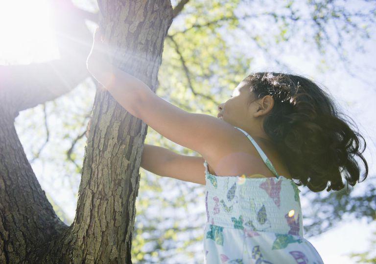 Hispanic girl climbing tree