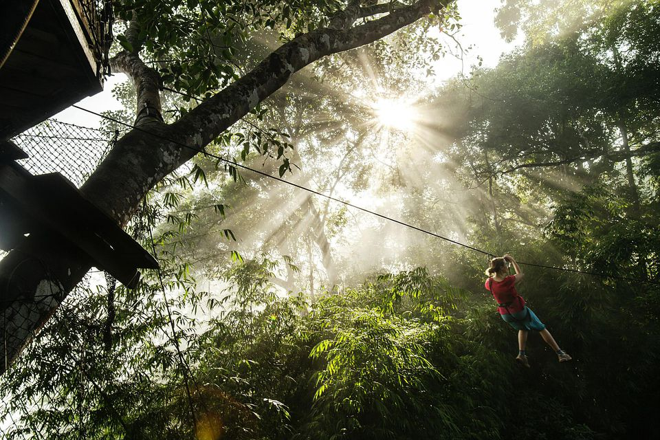 Woman on zip-line at the Gibbon Experience.