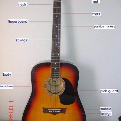 parts of the bass guitar overview. Black Bedroom Furniture Sets. Home Design Ideas
