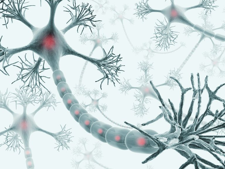 g-neuron.jpg