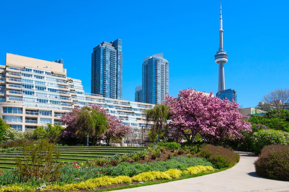 Downtown Toronto during Spring