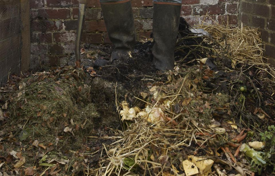 Mature man standing in compost