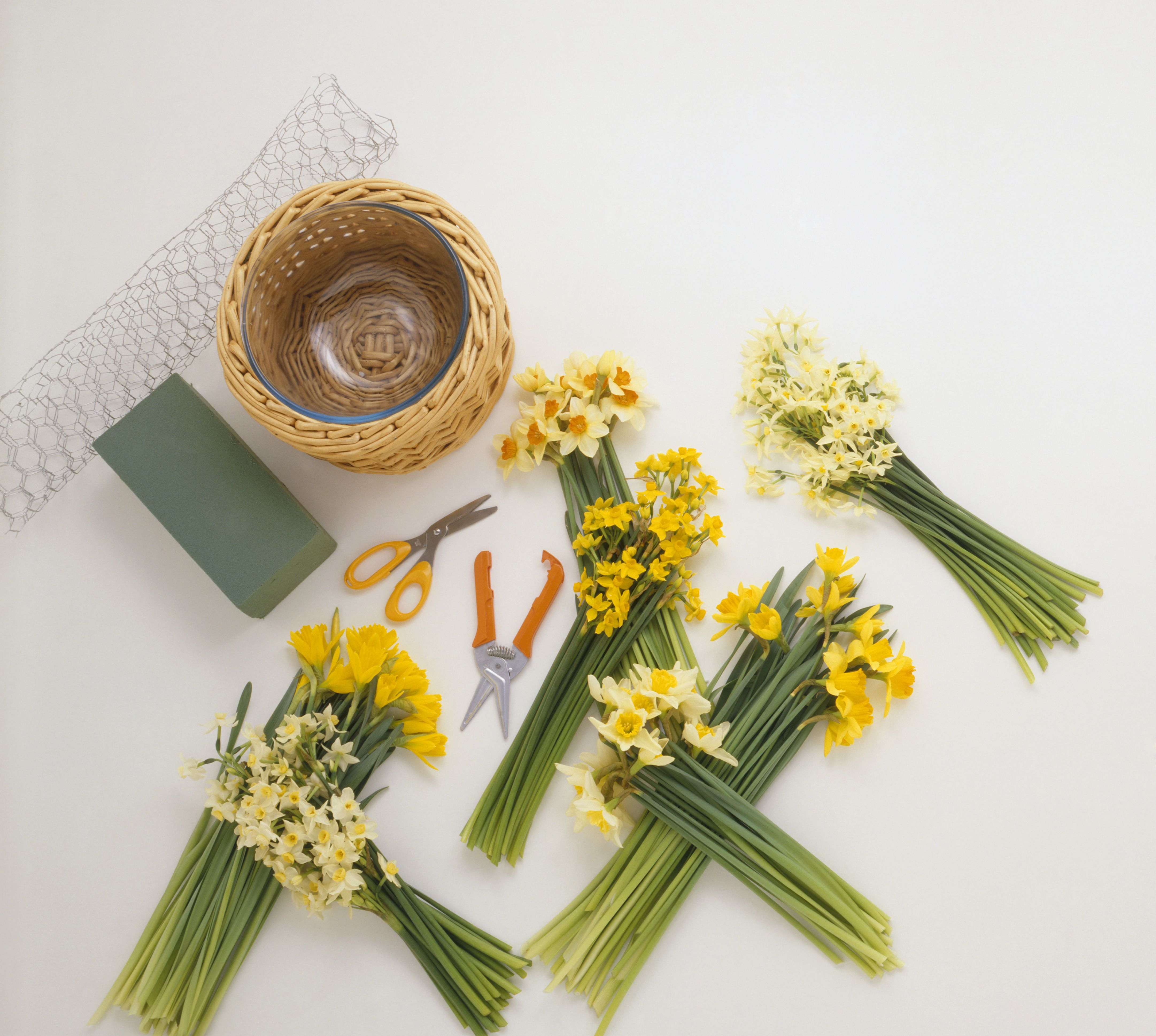 Basic flower arranging supplies for Arranging accessories