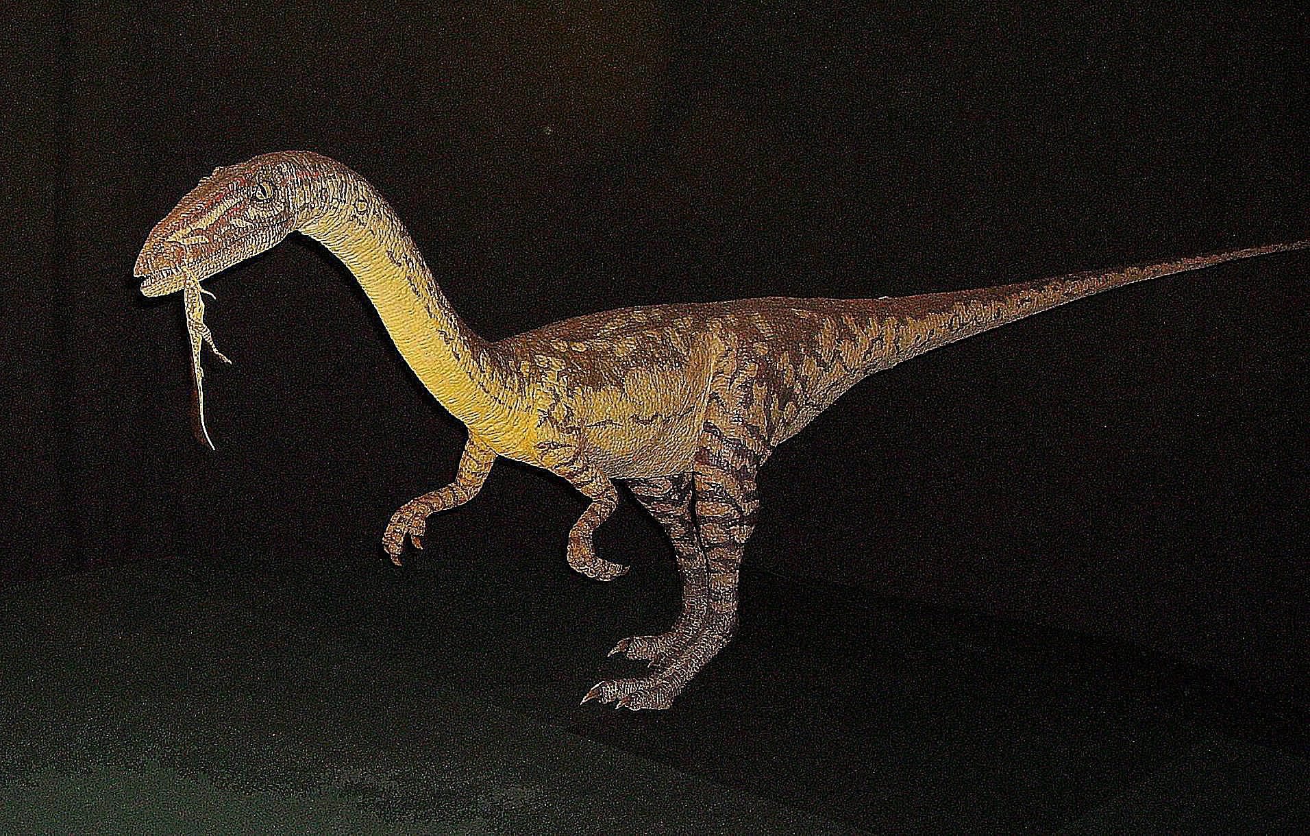 the dinosaurs and prehistoric animals of new mexico