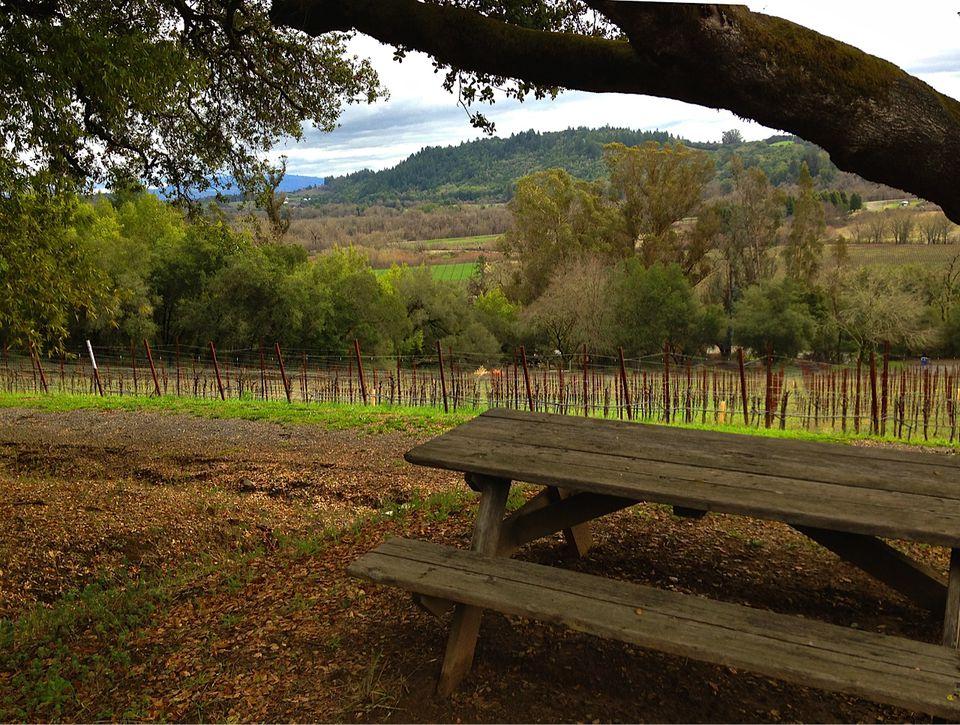 Best Sonoma Wineries To Visit