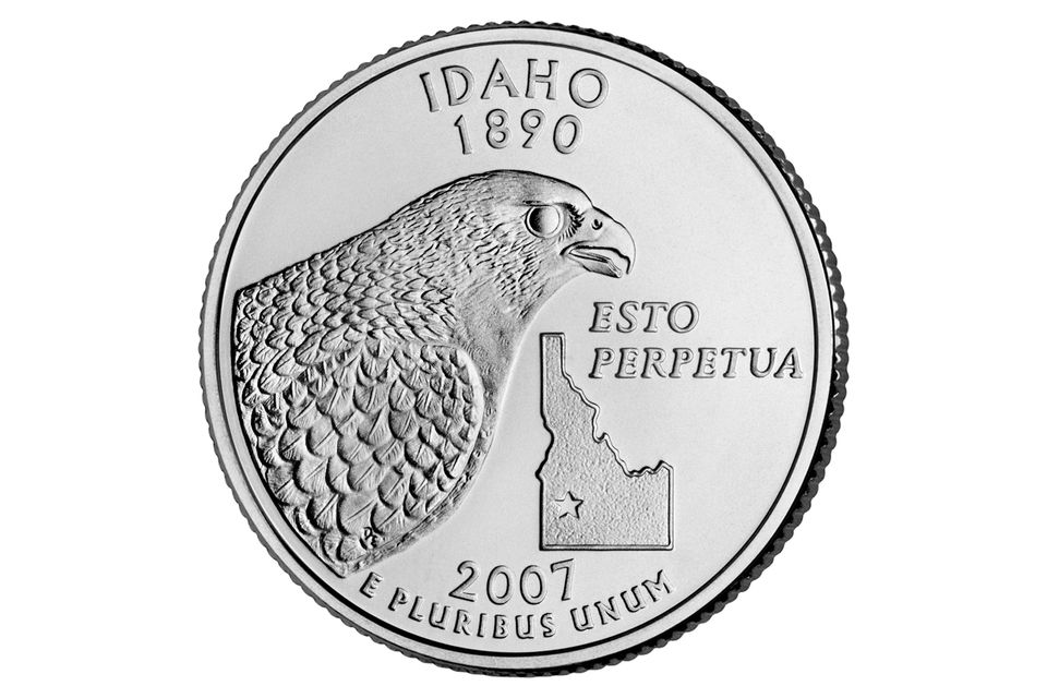The Idaho State Quarter 2007 Reverse