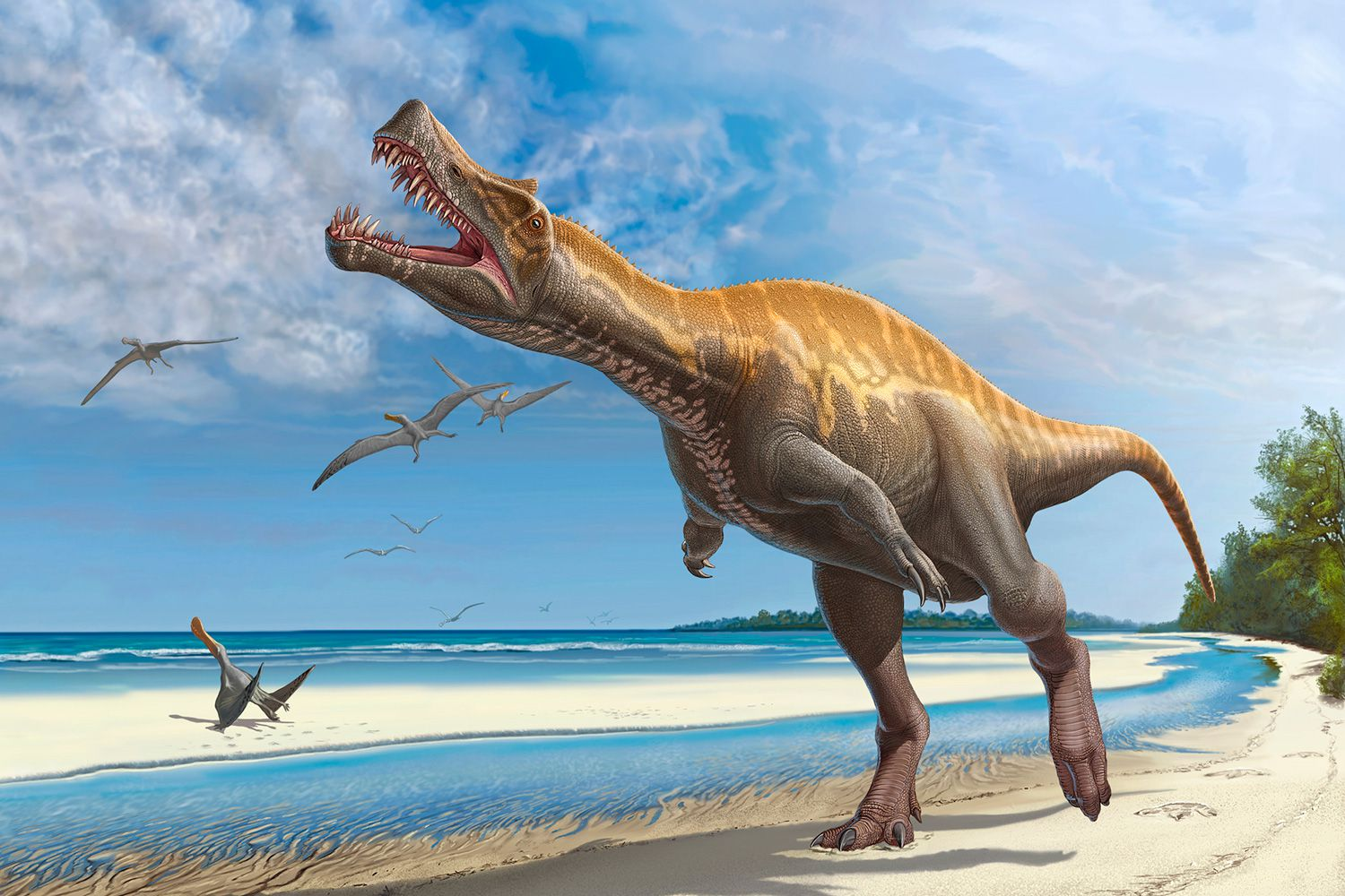 The 10 Most Important Dinosaur Facts