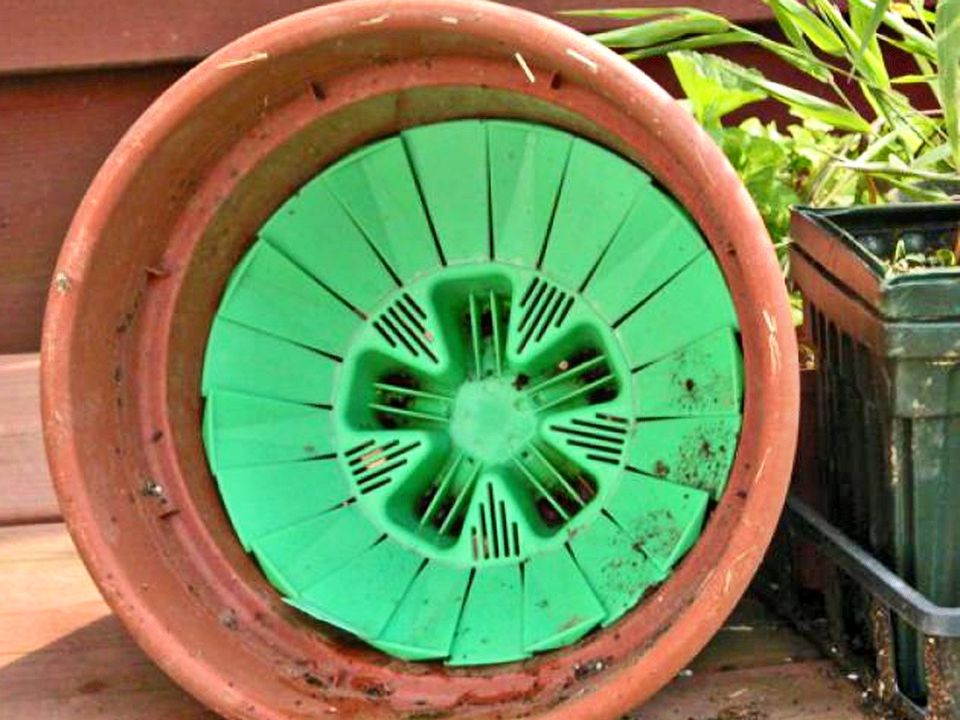 Plant Containers Need Good Drainage