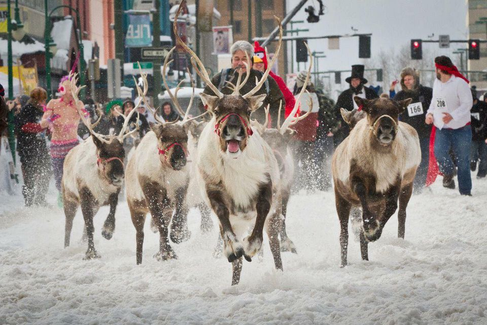 Anchorage's Fur Rendezvous