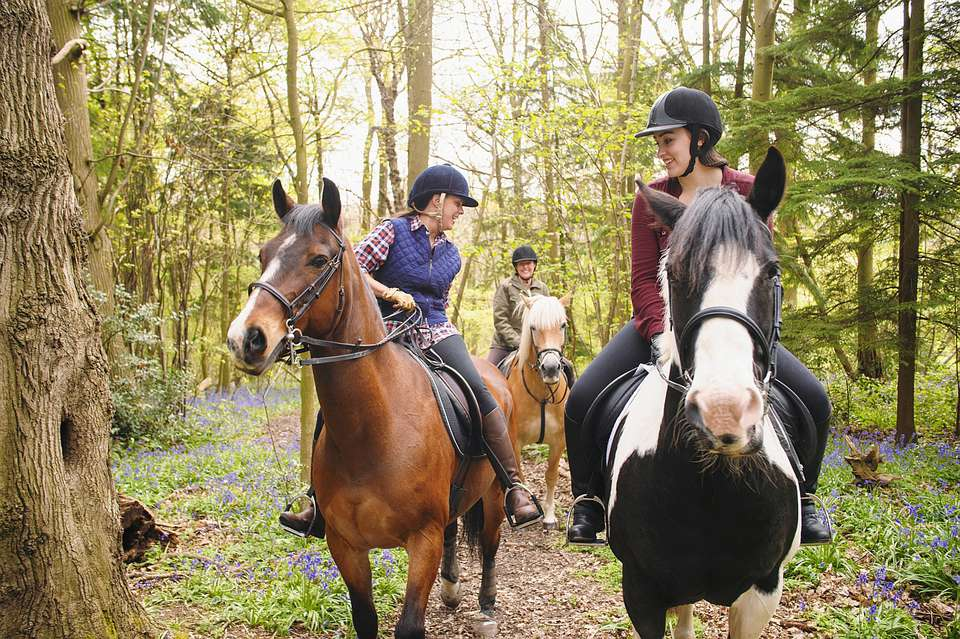 Three girls on horseback trail riding towards the camera.