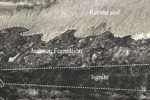 Learn About Lignite