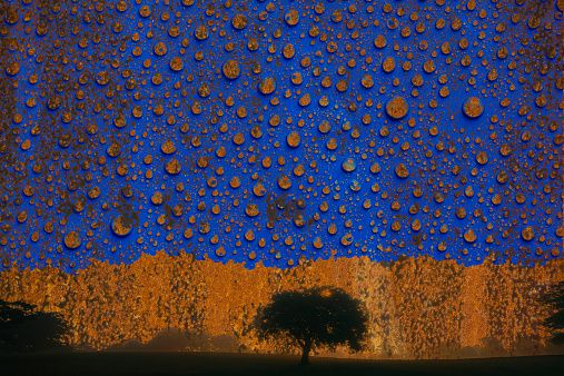 Acid Rain High School Science Fair Project Ideas