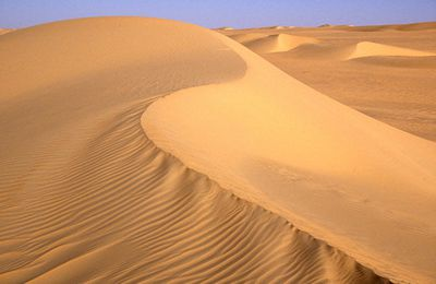 Learn About The Sahara Desert