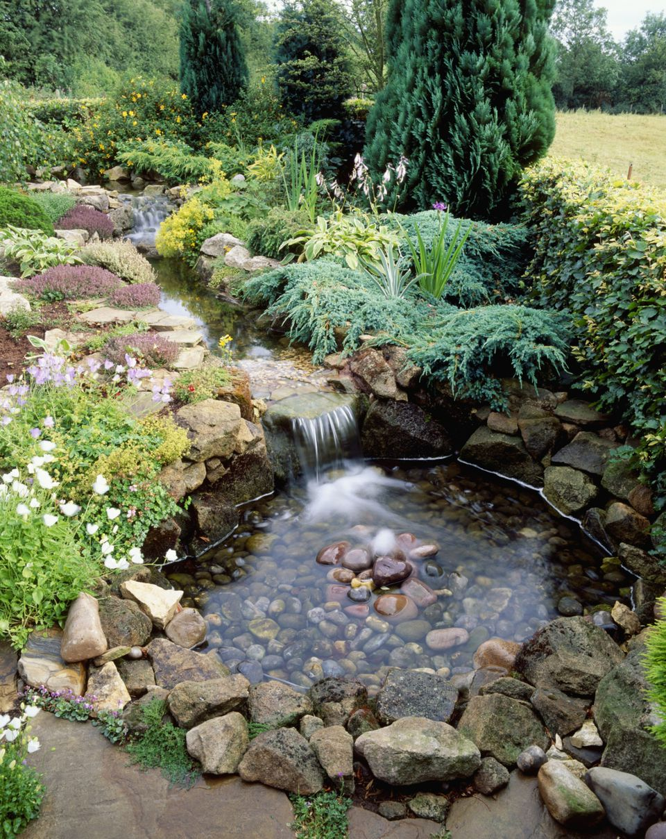 10 best garden pond building practices for Koi pond builders near me