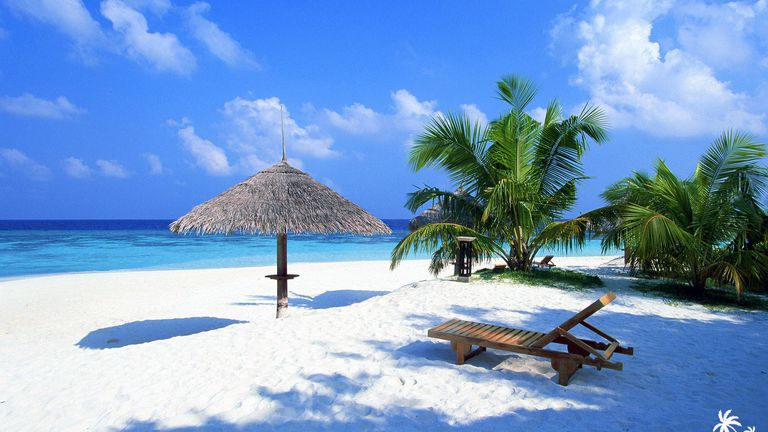 A Beach With Palms And Lounger