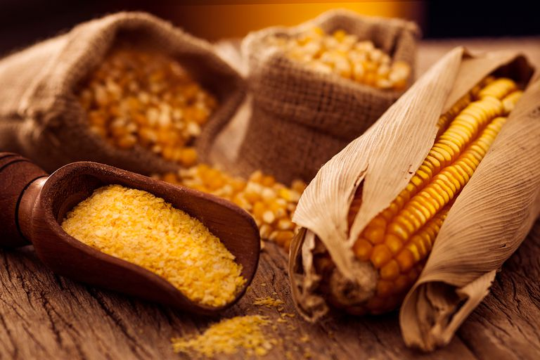 Ear of corn, corn grains inside a sack and cornmeal, upon a rustic wooden table.