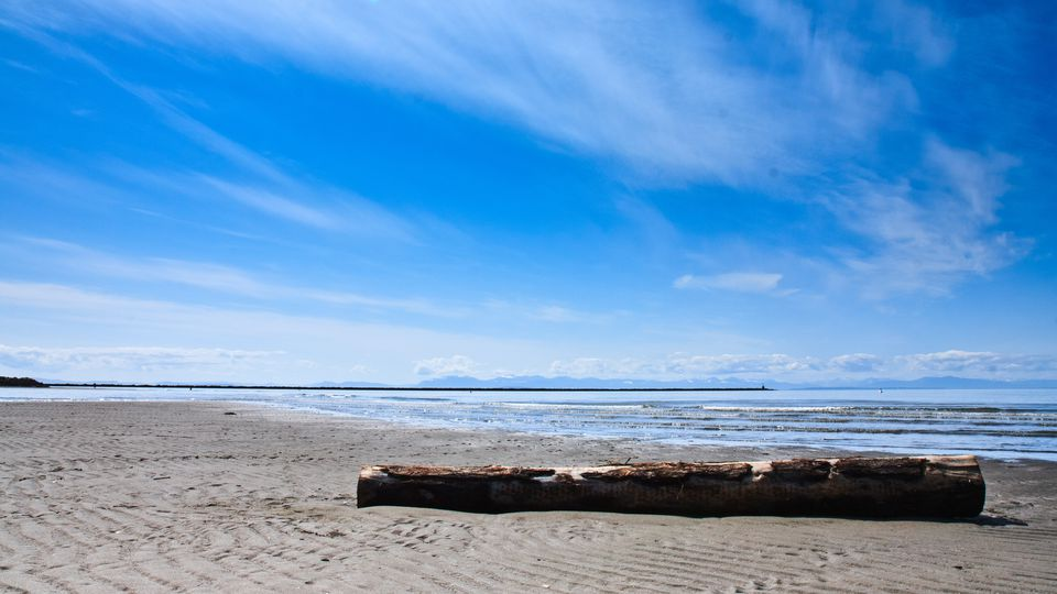 Wreck Beach in Vancouver, BC
