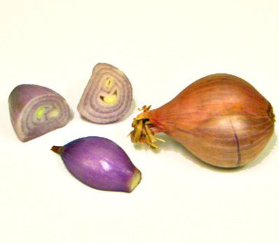 shallots, tips, measures, recipes, onions, garlic, receipts