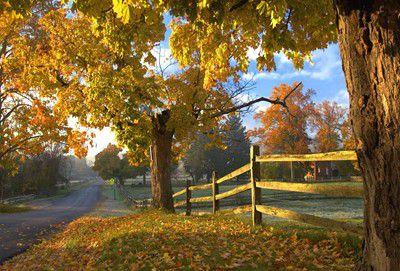 Hale Farm in the fall