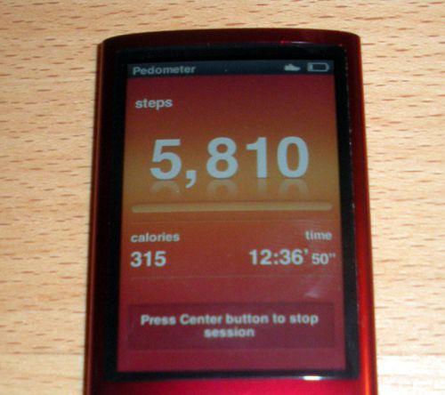 iPod nano Pedometer Screen