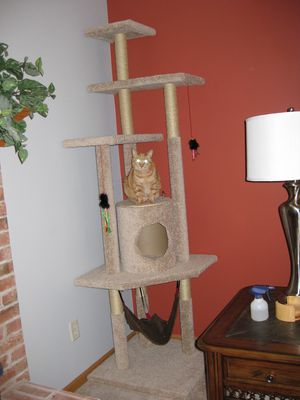 9 diy cat tree plans you can get for free for Diy cat tree pvc pipe