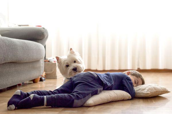 child sleep guidelines - boy sleeping on floor with dog