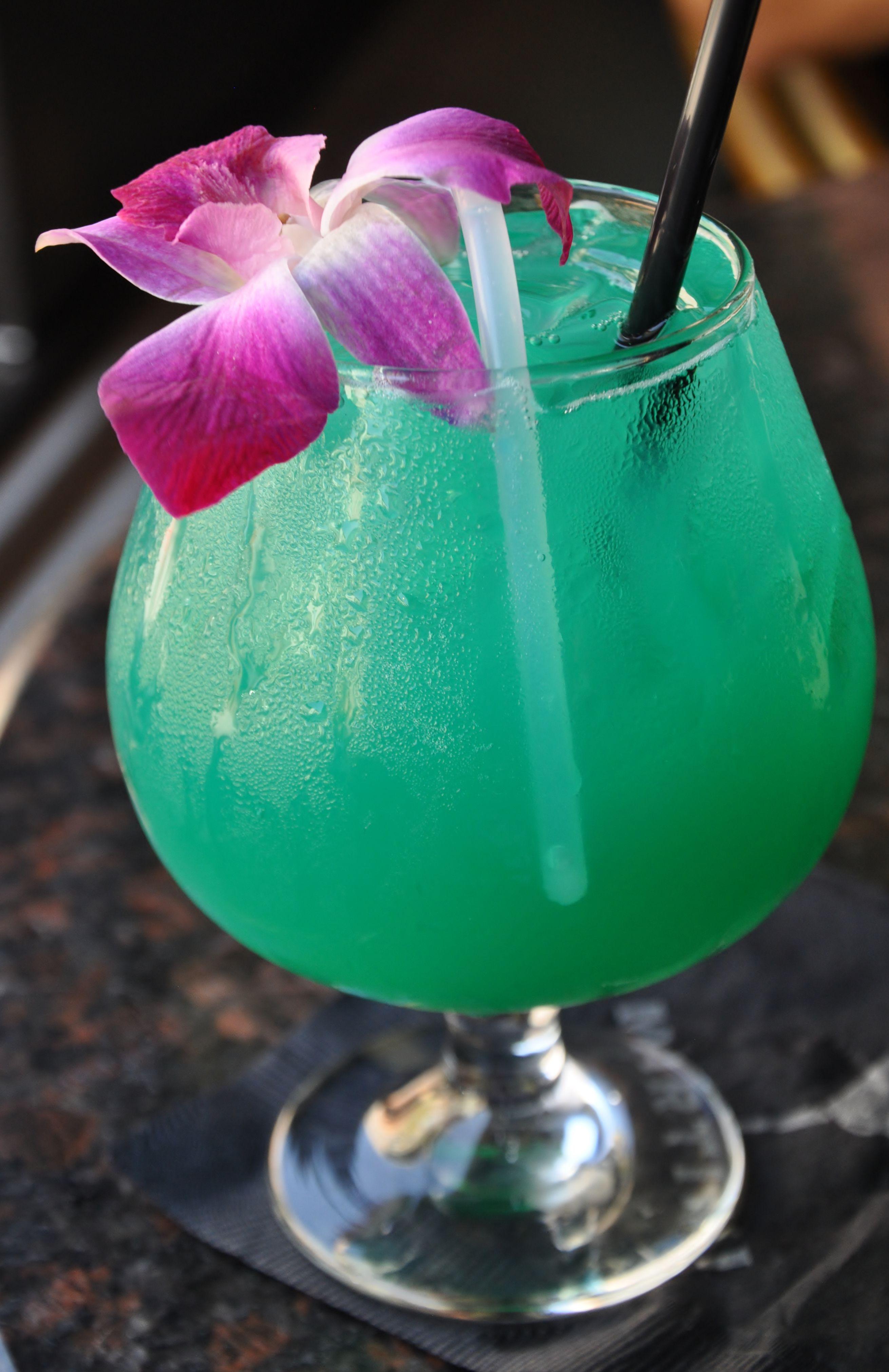 The Blue Martini In Plano Texas