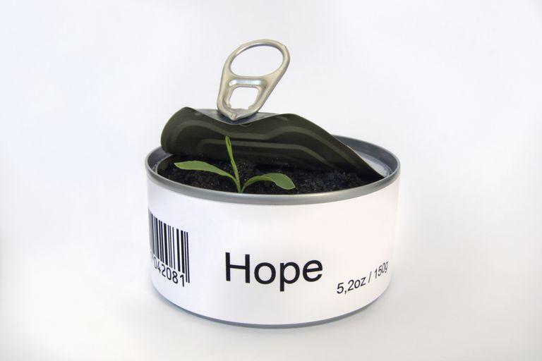 root word - hope