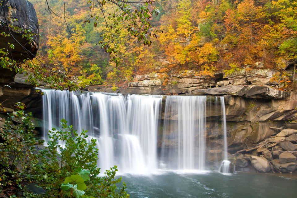 Additional Kentucky Fall Foliage Information