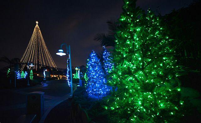 Christmas At California Theme Parks 2016 Holiday