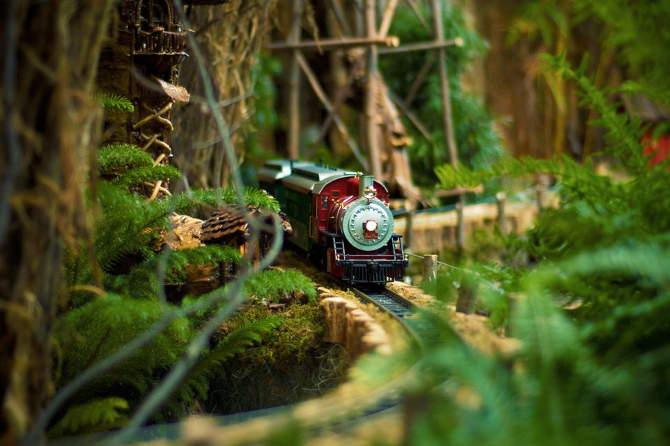 Model Train Coming Around Lush Mountain