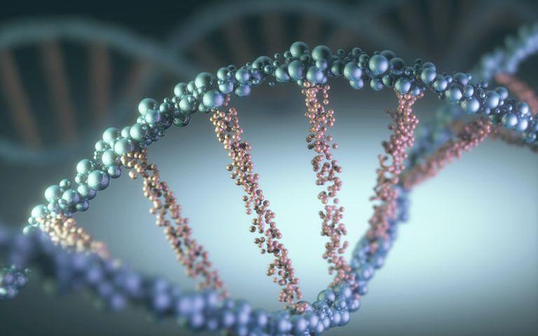 I got DNA Quiz Dynamite. DNA Biochemistry Quiz