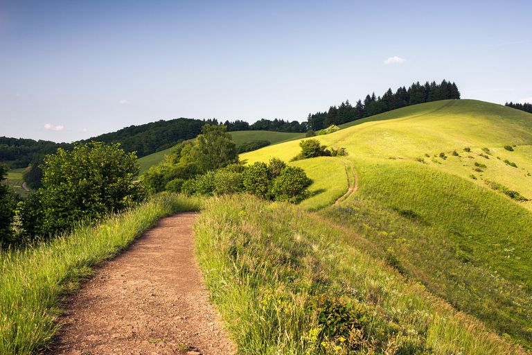 """Vanderbilt is thought to derive from a German word meaning """"low hill,"""" such as these rolling hills in the German Kaiserstuhl area."""