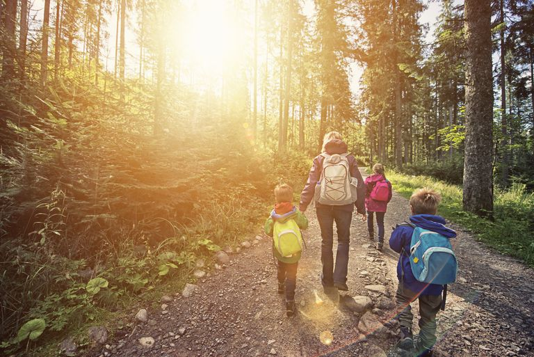 Nature play - Mother and kids hiking in sunny forest