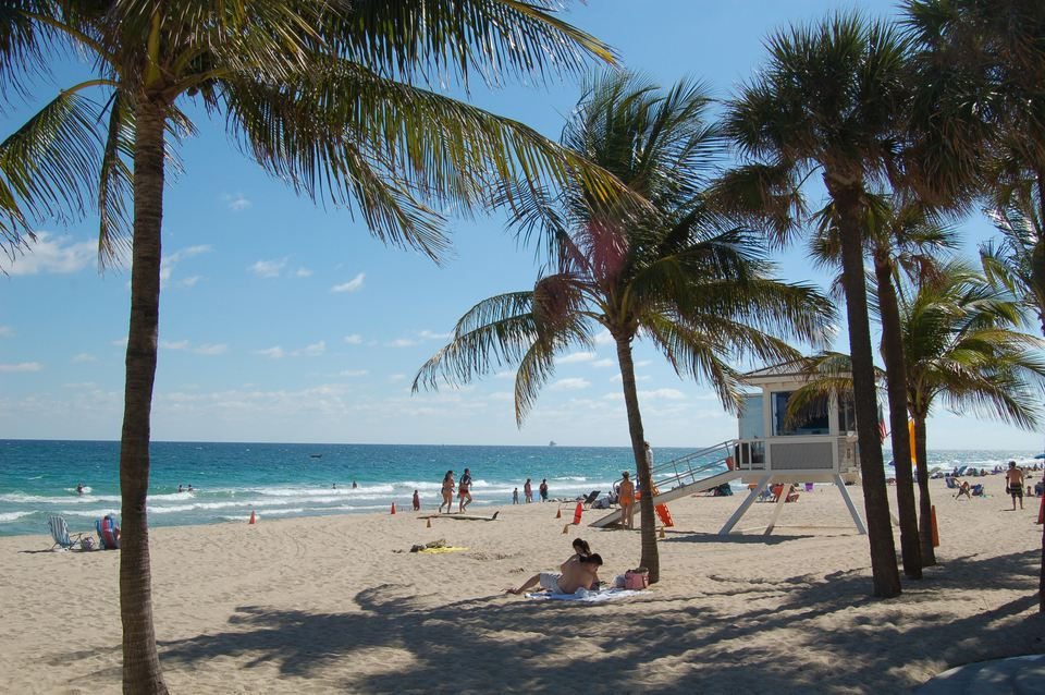 Gentle waves, palm trees and a lifeguard station on Fort Lauderdale's sandy beach.