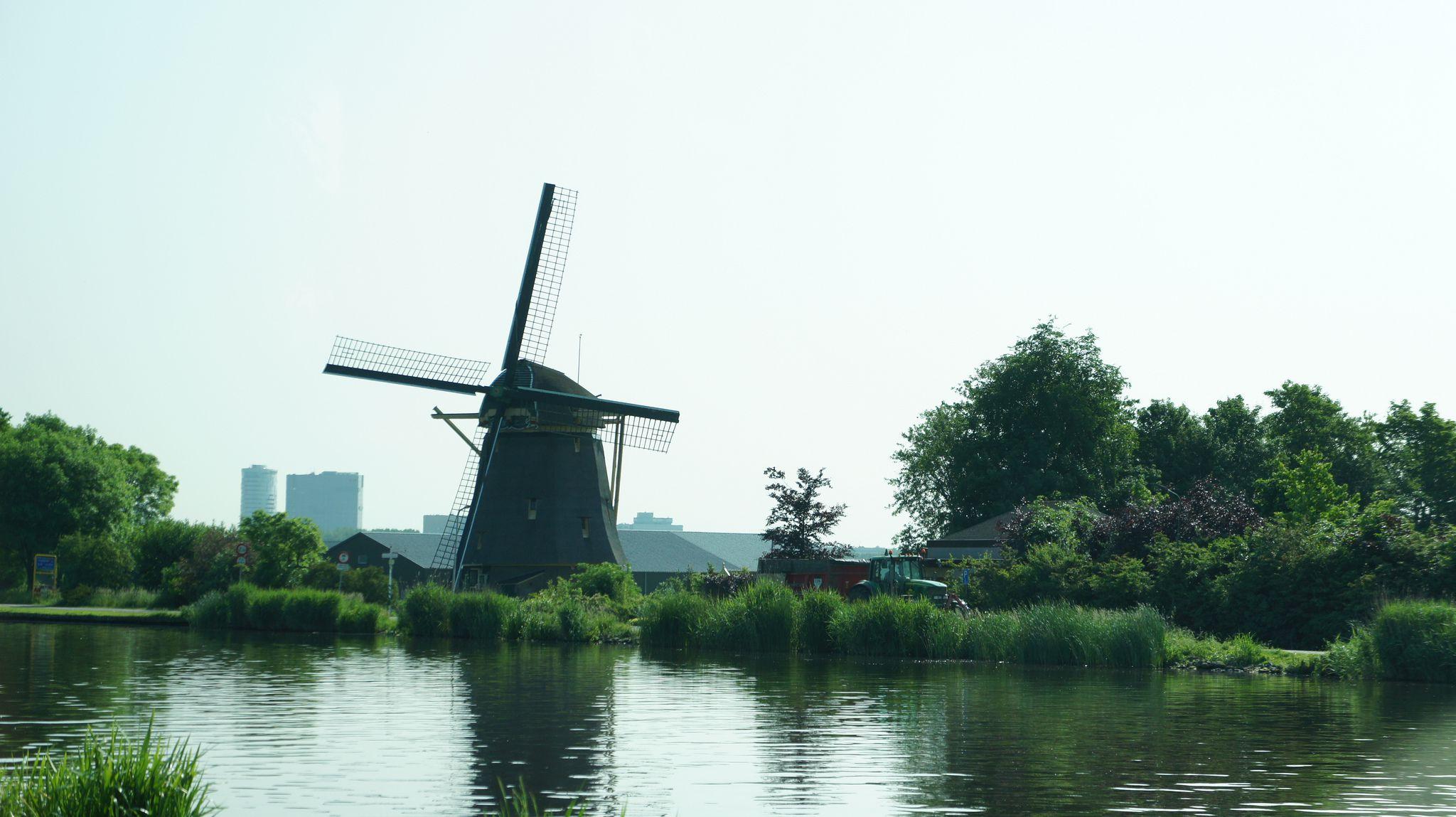 windmills of amsterdam