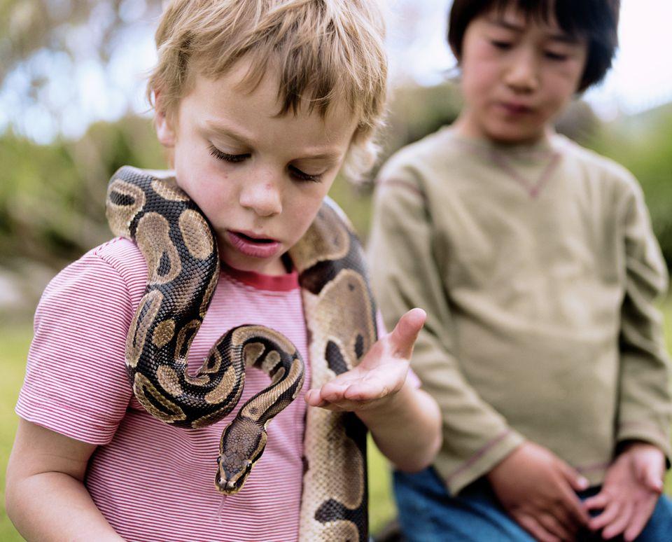 Two boys (5-7) outdoors (focus on boy with Ball python around neck)