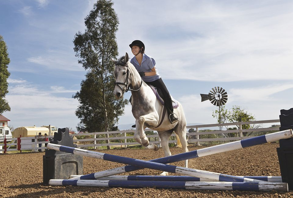 Girl jumping her horse over a set of cross rails.