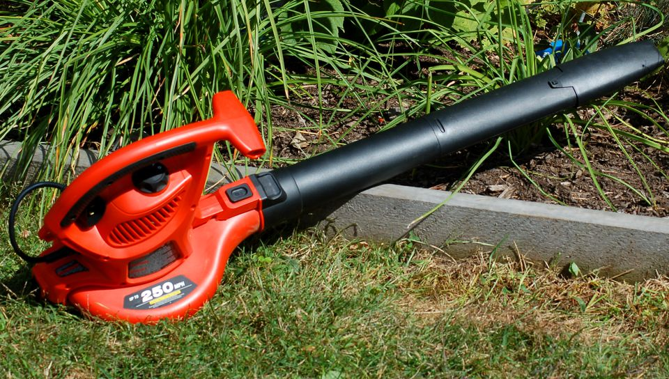 My photo is of the BV6000, a Black & Decker product. It's in leaf blower mode.