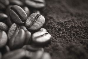 Close up of whole coffee beans and ground coffee