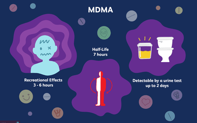 the history effects and dangers of mdma a mood altering drug Ecstasy and the neurobiology of social behavior  social behavior that isn't drug-induced mdma potently stimulates the release of the  the mood effects of.