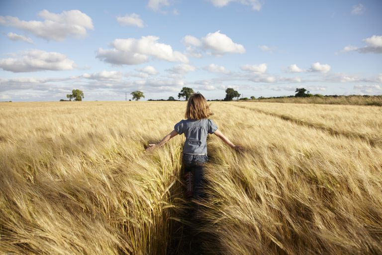 Girl walking in field of wheat