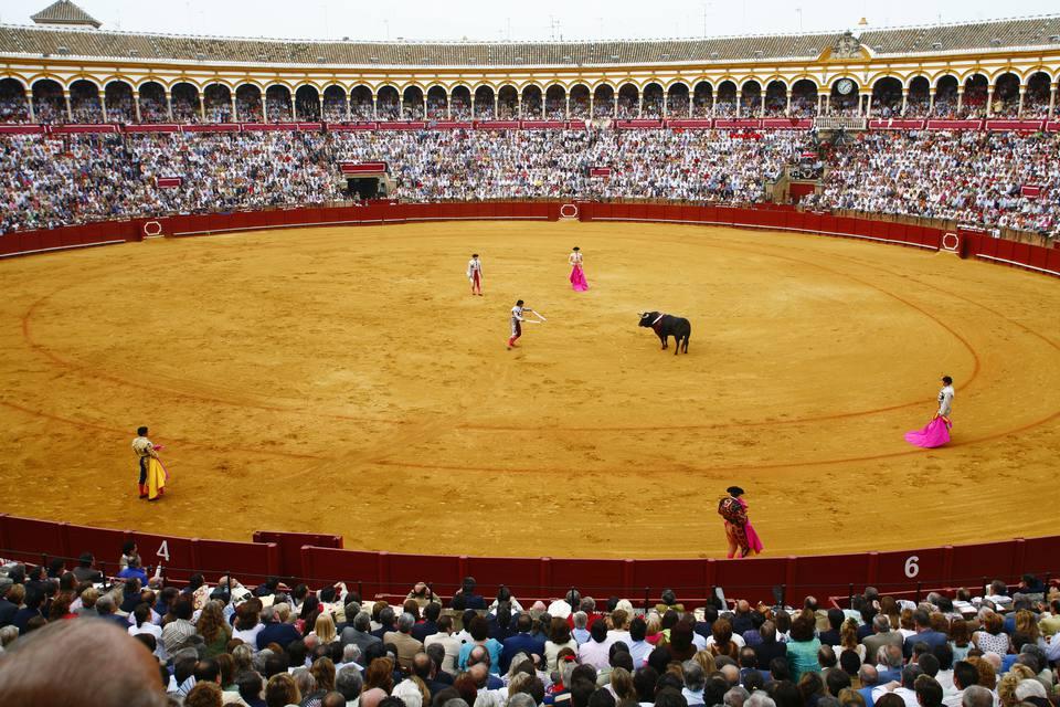 Bull fighting at the Maestranza bullring, Seville, Spain.