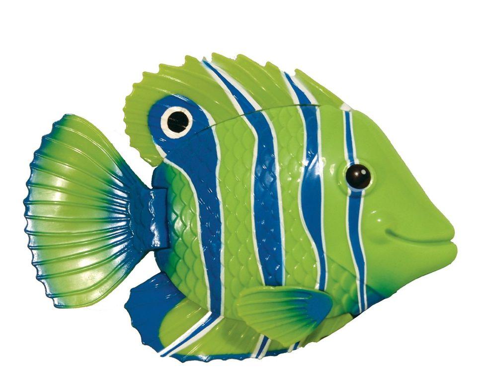 rainbow reef swimming fish