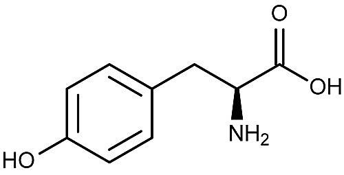 Image result for l-tyrosine chemical makeup