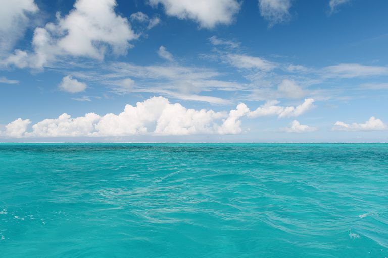 Why Is the Ocean Blue and Sometimes Green?