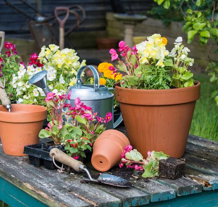 Potted Garden Plants The elements of successful container gardening dont drown those precious plants in your container garden workwithnaturefo