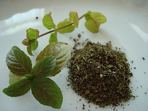 Cooling mint makes a great accent for sweet and savory dishes